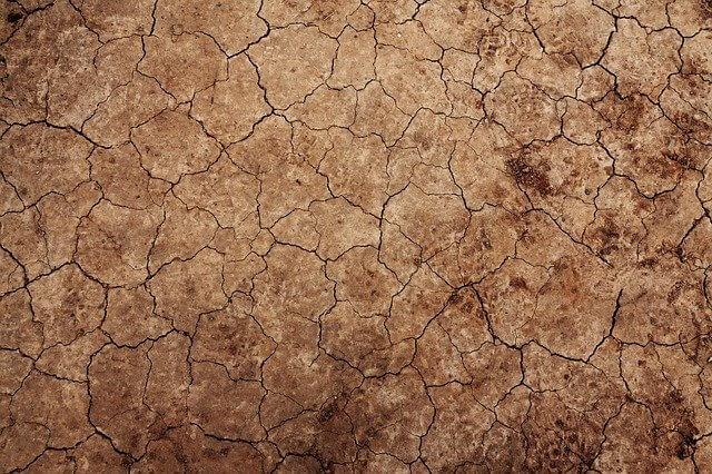 Wüstenboden auf der Zunge