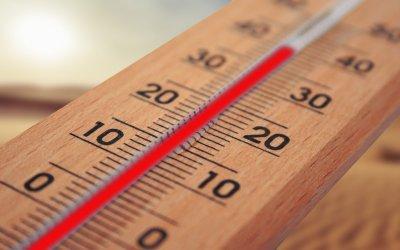 Montags-Post #13 – Lebensmittelauswahl bei hitzigen Temperaturen