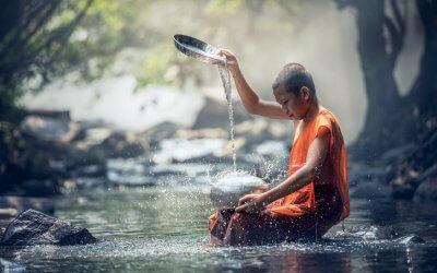 Wandlungsphase Wasser Teil 2 | Montags-Post #27