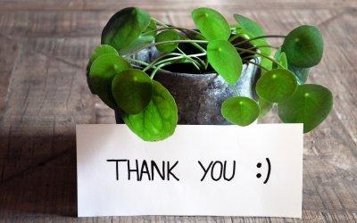 Dankeschön ! | Montags-Post #30