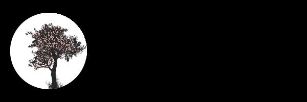 Heilpraktiker / TCM Wittenberg
